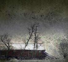 Evening Barn by Judi Taylor