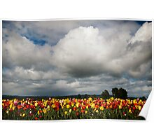 God's Watering Can Poster