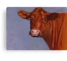 Red Hereford Beef Cow in Oil Pastel Canvas Print