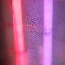 Neon Tubes by Danielle  La Valle