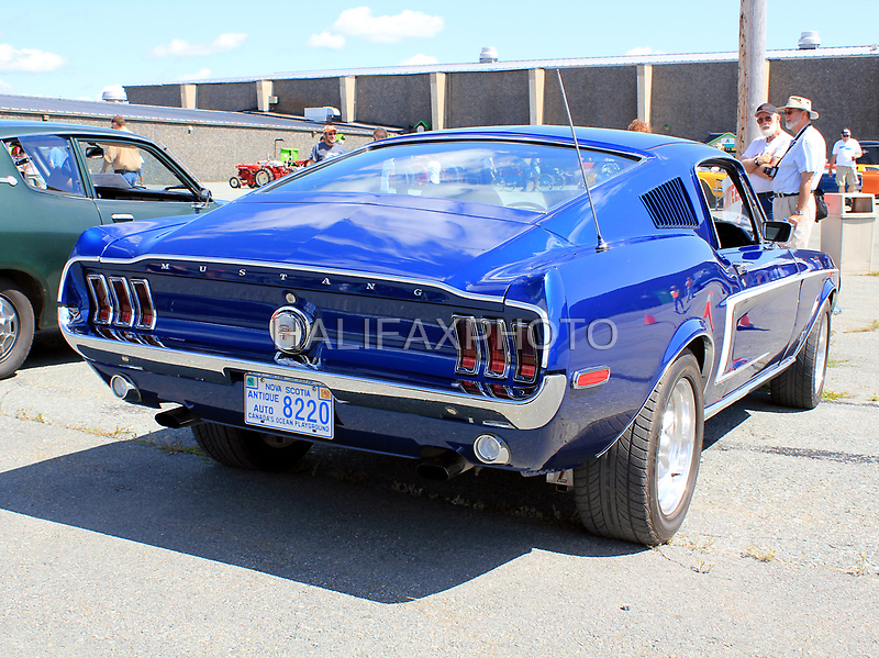Ford Mustang GT by HALIFAXPHOTO