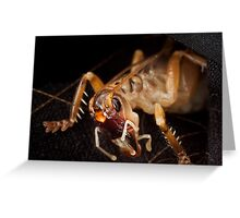 Alien Hopper Greeting Card