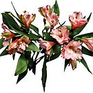 Asiatic Lilies and Leaves by Susan Savad