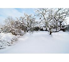 After a Snowstorm Photographic Print