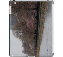 Central Park, NY in Spring iPad Case/Skin