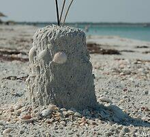 Castle in the Sand  by John  Kapusta