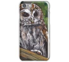Tawny Owl in Oil Pastel, Wildlife Art iPhone Case/Skin