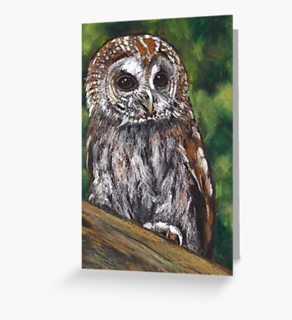 Tawny Owl in Oil Pastel, Wildlife Art Greeting Card