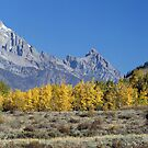 Fall Sweeping Through The Tetons (pan) by A.M. Ruttle