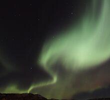 Aurora Borealis -  Yukon, Canada by Marty Samis