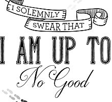 I solemnly swear that i am up to no good by meltrindade