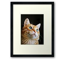 Seriously, I am so cute. Framed Print