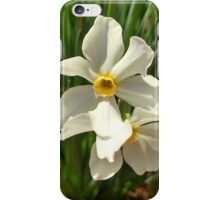 Daffodil iPhone Case/Skin