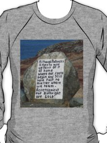 Painted Rock in NL T-Shirt