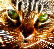 Green eyes Cat by augustinet