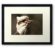 Check out my profile Framed Print