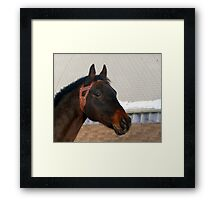 That Distant Look Framed Print