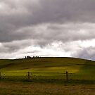 Light on the hill by Lynden