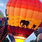 Hot Air Balloons VI by Lorelle Gromus