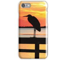 Late Evening Roost iPhone Case/Skin