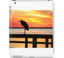 Late Evening Roost iPad Case/Skin