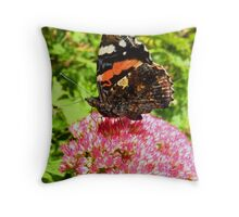 Red Admiral under wing detail Throw Pillow