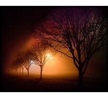 River Road Emu Plains at Night  Photographic Print