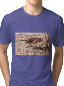 Juvenile Myrtle Warbler Tri-blend T-Shirt