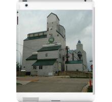 Prairie View Elevator iPad Case/Skin