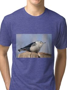 White Breasted Nuthatch Tri-blend T-Shirt