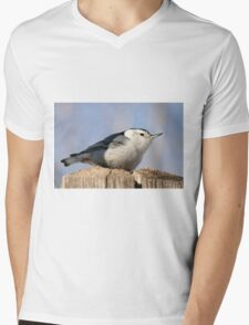 White Breasted Nuthatch Mens V-Neck T-Shirt