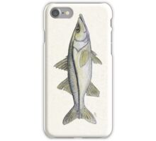 Snook Watercolor iPhone Case/Skin