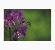 wasp on fireweed flower #2 One Piece - Short Sleeve