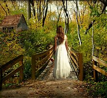 Can't Go Back to the Way it Was... by Karen  Helgesen