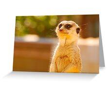 Watchful Gaze Greeting Card