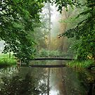 A little bridge in the park by jchanders