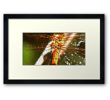 Sparckles of light on the wings of a Dragon Framed Print