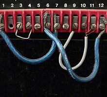 1, 2, 3, 4, 5, 6... by SarahMcD0101