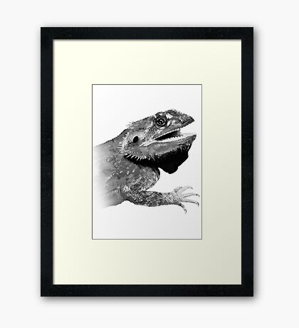 bearded dragons  Framed Print