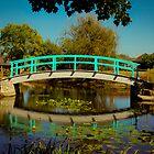 Monet Bridge at Cox Arboretum by Tom Aguero
