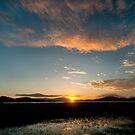 Mareeba Wetlands at Sunset,FNQ. by Susan Kelly