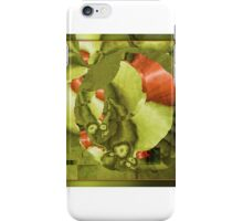 Aug15 Fractal Mapping iPhone Case/Skin