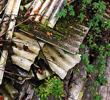 Corrugated Asbestos Broken by Rees Adams