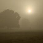 A Beautiful Morning by David King