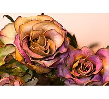 Deathly Beauty Photographic Print