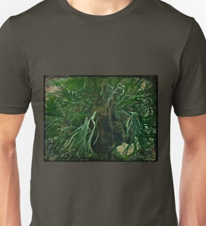 Ferns in the Jungle Room Unisex T-Shirt