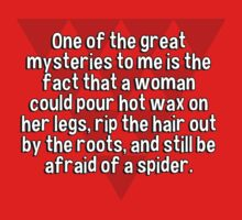 One of the great mysteries to me is the fact that a woman could pour hot wax on her legs' rip the hair out by the roots' and still be afraid of a spider. by margdbrown