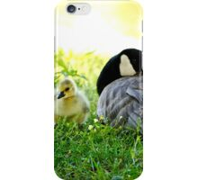 Goose Down... iPhone Case/Skin