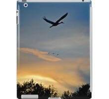 Homeward Bound.... iPad Case/Skin