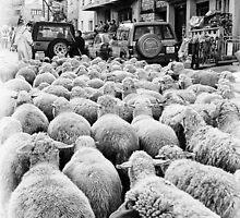 traffic jam by zdepe